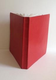 2006 Red Pig Spine