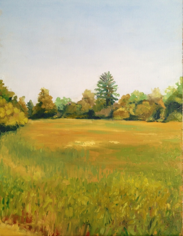"Field in Summer : Oil on board, 9""x12""  2013"