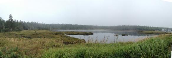 A panorama of the marsh behind Seawall beach.