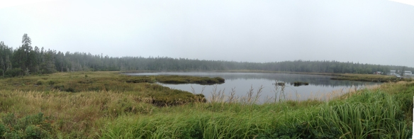 A panorama of the marsh behind Seawall beach.