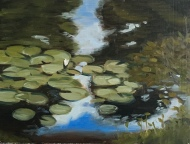 "Water Lillies at Mt Auburn 1 : Oil on board. 9″x 12"" 2017"